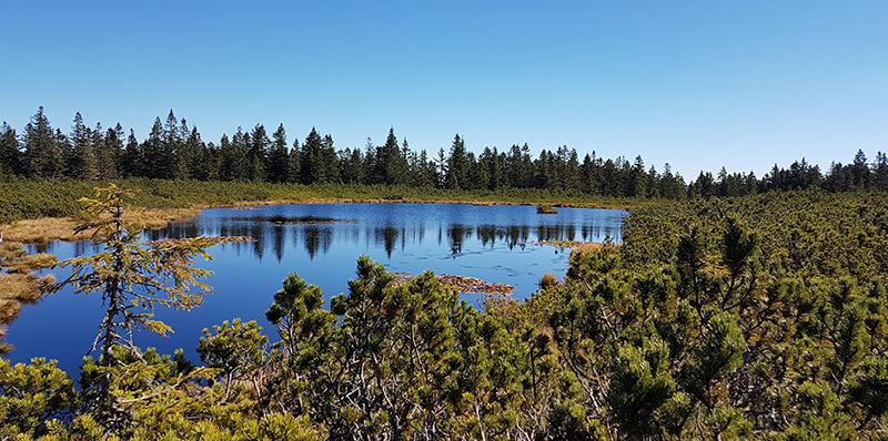 Lac pohorje