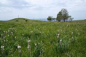 Mont Slavnik