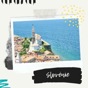 A propos de slovenie-voyage.com