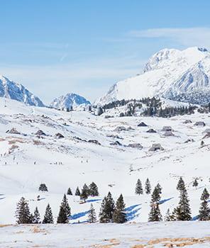 ski velika planina