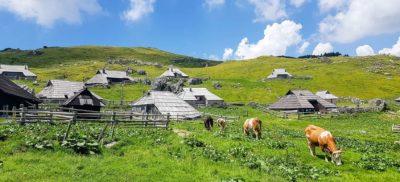 Velika Planina, le plus beau plateau alpin d'Europe