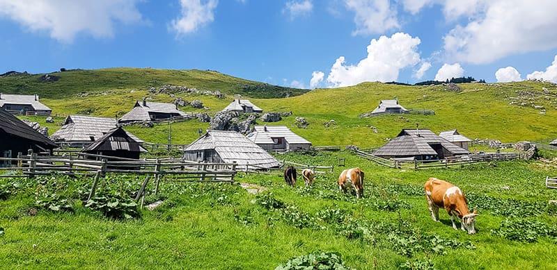 Village de bergers